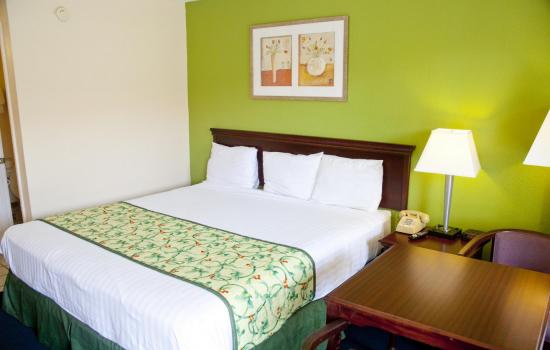 Regency Inn & Suites - 1 King Bed